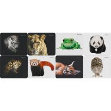 Килимок для миші Defender WILD ANIMALS,  гума+тканина 220*180*2мм