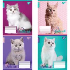 18л. кл CUTE CAT (КОТИ)