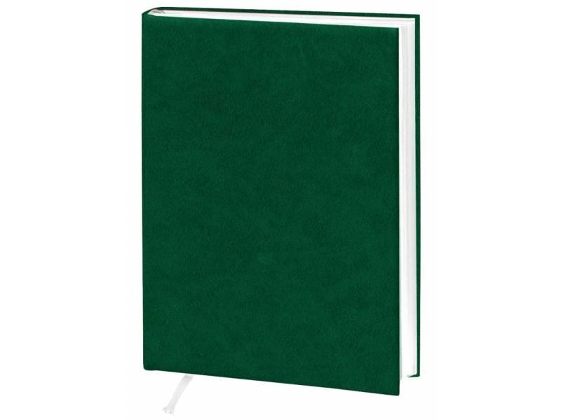 Діловий щоденник Поліграфіст А5 В241 баладек ARIANE, зелений лінія